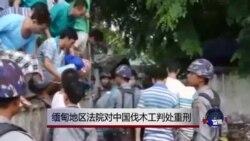 缅甸地区法院对中国伐木工判处重刑