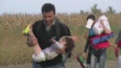 전 세계 난민 6천만명 넘어...시리아 사태 등으로 급증