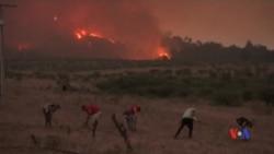 2017-01-30 美國之音視頻新聞: 智利山火在週日開始減弱
