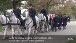 Solemn Honors at Arlington Cemetery for America's Fallen