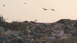 Еколози: На Струга и` се заканува еколошка бомба