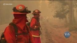 Лісові пожежі продовжують палати у Каліфорнії – розповіді місцевих мешканців. Відео
