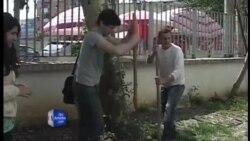 Grupe të rinjsh kanë kryer këtë dimër mbjellje të shumta për të gjelbëruar Tiranën