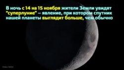 В ночь с 14 на 15 ноября земляне увидят самую большую луну за 68 лет