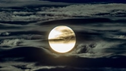 Quiz - New Research Suggests Full Moon Can Affect Sleep