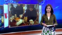 VOA卫视(2016年1月29日 第一小时节目)
