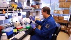 Gene Editing Shows Promise for Curing Genetic Disease