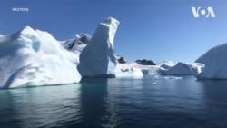 Пластикові відходи є навіть у водах Антарктиди - дослідження Ґрінпіс. Відео