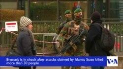 Belgium in Shock After Attacks