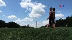 Mỹ trùng tu toàn bộ thảm cỏ Quảng trường Quốc gia