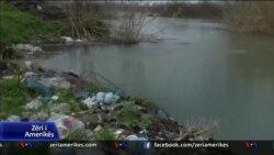 Përpjekje për mbrojtjen e mjedisit në Shqipëri