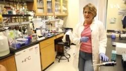 #ЖінкиВНауці: Подружжя українських вчених – зірки американської науки. Відео