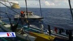 Bắc Kinh: TQ đánh bắt ở vùng biển gần Indonesia là hợp pháp