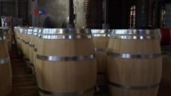 Warung VOA: Usaha Anggur di California (2)