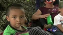 美国会议员在越境儿童命运上意见冲突