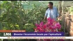 Booster l'économie locale par l'apiculture