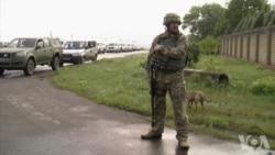 美国特使访问乌克兰 乌国内冲突再次成为焦点