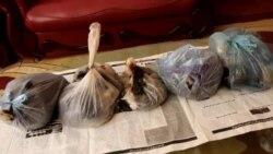 بازار فروش و قاچاق مواد مخدر در ولایت سرپل