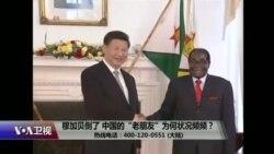 """时事大家谈:穆加贝倒了,中国的""""老朋友""""为何状况频频?"""