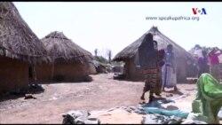 Prevenção da malária/paludismo infantil, o caso do Senegal