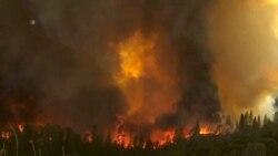 US Wild Fires