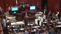 埃及就新宪法进行全国辩论