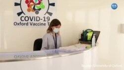AstraZeneca ve Oxford Aşı Denemelerine Yeniden Başladı