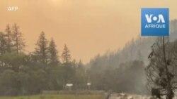 Les dégâts causés par les incendies dans la vallée de Napa en Californie