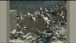 UN: Plastic Accounts for $13B in Damage to Marine Habitat