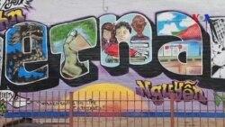 Tăng cường an ninh cho khu phố người Việt tại Chicago