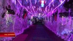 Hang đá đón Giáng sinh ở Đồng Nai