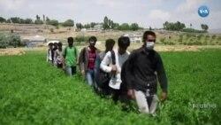 Turkiyada afg'onistonlik qochoqlar