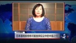 VOA连线:日本首相安倍有可能放弃拟议中的中国之行