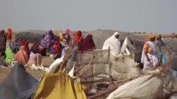 Taskar VOA: Harin Kunar Bakin Wake a Wani Kauyen Konguda