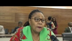 Embaixadora angolana em reunião de diplomatas contra a xenofobia na África do Sul
