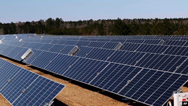 These are some of the 206,000 polycrystalline solar panels that make up the 540-acre site solar project in Lamar County near Sumrall, Miss., Wednesday, March 7, 2018. (AP Photo/Rogelio V. Solis)