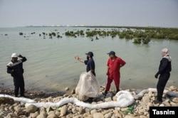 آلودگی نفتی در سواحل ماهشهر- آرشیو