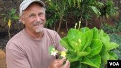 Steve Perlman, pakar botani di Hawaii, AS (foto: dok).
