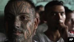 Una serie de crímenes y actos de violencia se les atribuye a esta nueva clase de delincuentes juveniles.