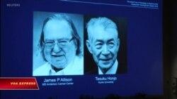 Công bố Giải Nobel Y học 2018