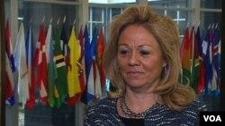 美國駐聯合國日內瓦代表處大使艾琳.多納霍(2012年11月13日照片)