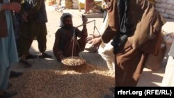 خان علي: سږ کال مو د بادامو حاصلات کم شوي