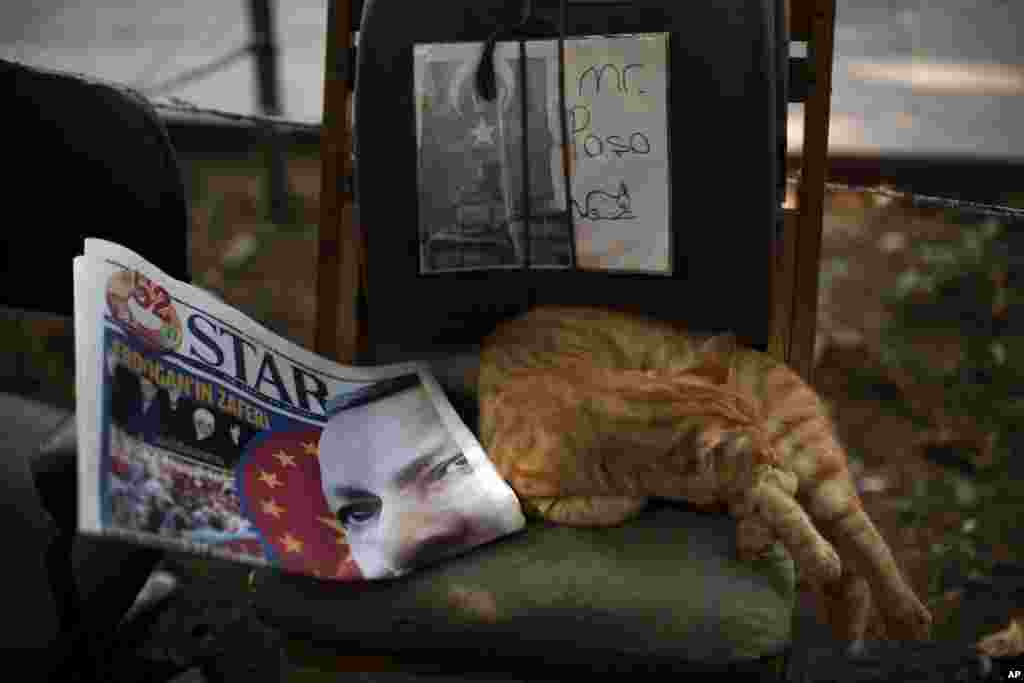A cat sleeps next to a newspaper showing a photo of the Turkish Prime Minister Recep Tayyip Erdogan in central Istanbul, Aug. 11, 2014.