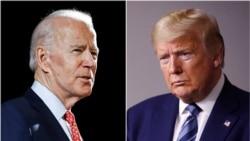 'Ủng hộ Trump' và 'ủng hộ Biden' trong cộng đồng gốc Việt