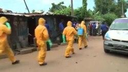 شمار تلفات بیماری ایبولا به بیش از ۴ هزار نفر رسید