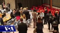 Rasprava Vljore Čitaku i Ivice Dačića u Savetu bezbednosti UN