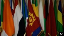 افریقايي اتحاد د ملګرو ملتون نه د مالي مرستې غوښتنه وکړه