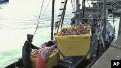 Des pêcheurs à quai à San Francisco
