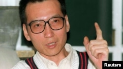 FILE - Veteran Chinese pro-democracy activist Liu Xiaobo makes a point during a March 1995 interview.