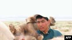 Người chăn nuôi gia súc ở Gobi bên những con lạc đà